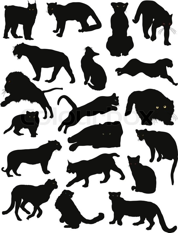 Animal Silhouette Puma Stock Vector Colourbox