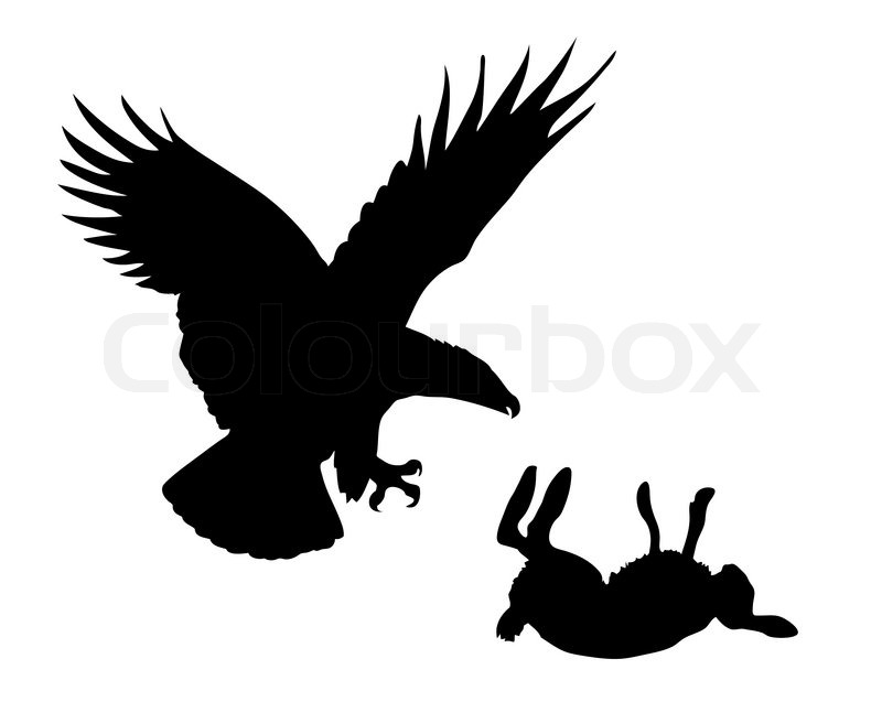 Illustration eagle and hare on white background  Stock