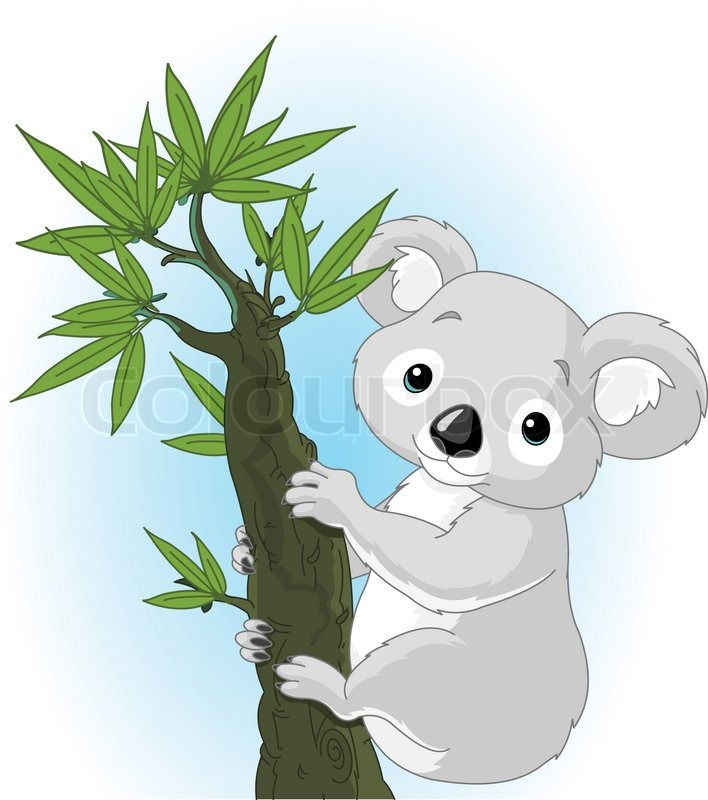 Cartoon Eucalyptus Tree
