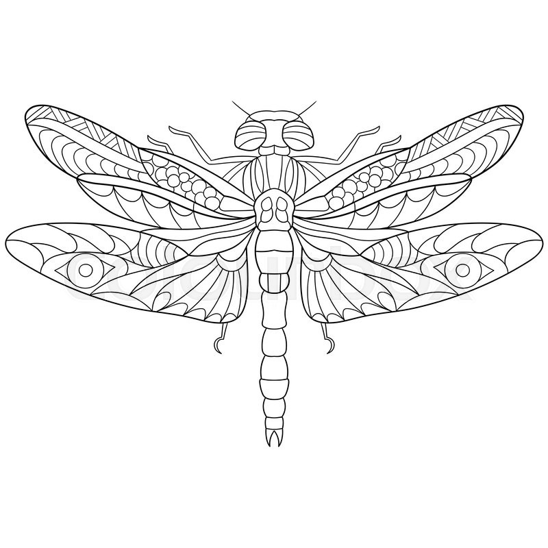 Zentangle stylized cartoon dragonfly insect, isolated on
