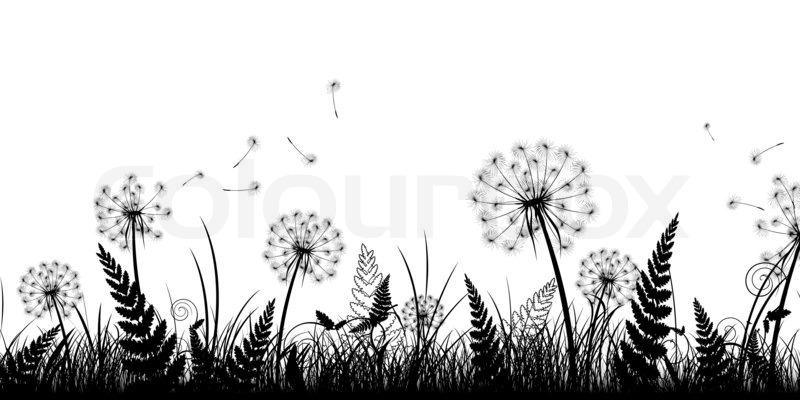 Sommer Feld mit Gras und Lwenzahn in schwarz und wei