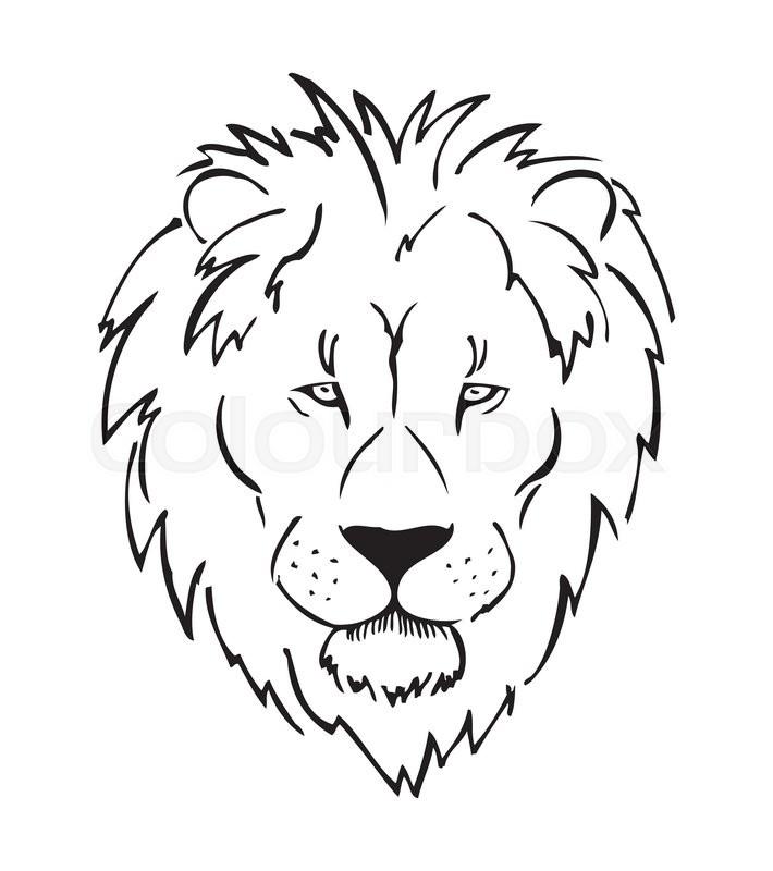 Full Face Lion Head African Lion Stock Vector