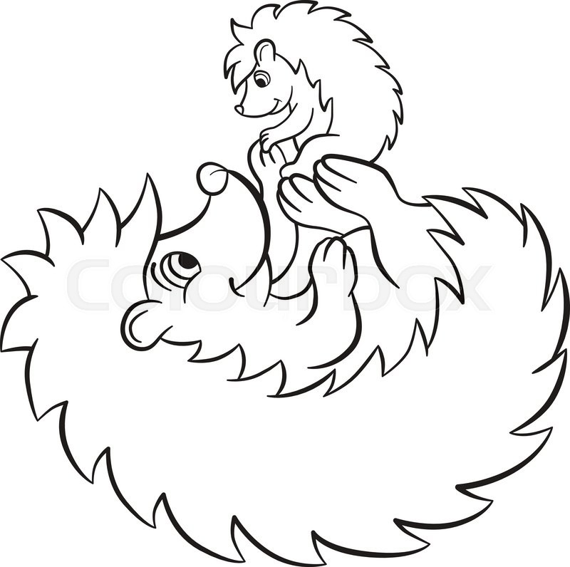 Cute Baby Porcupine Coloring Page