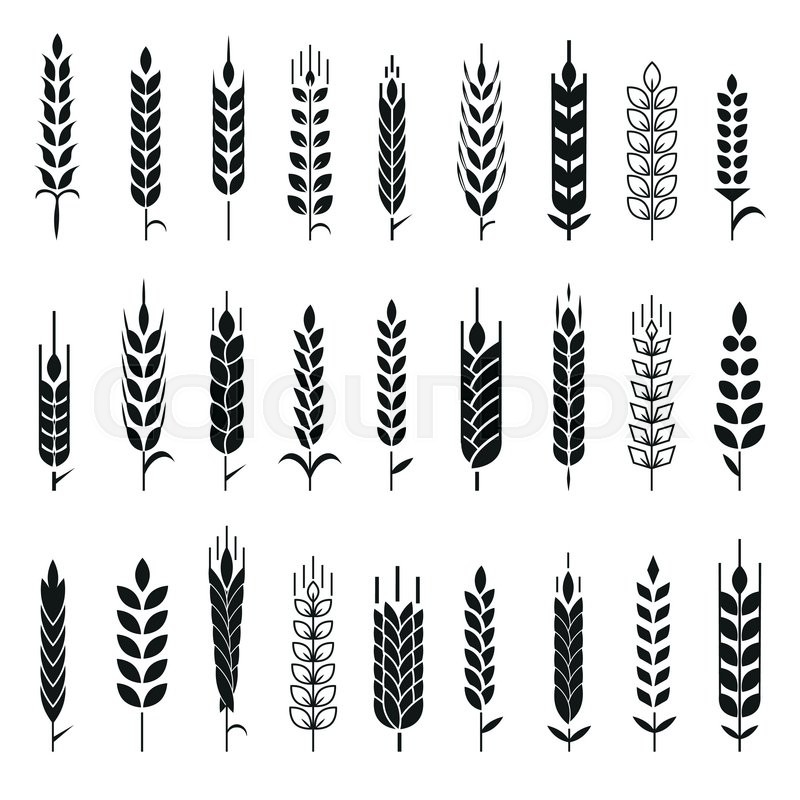 Wheat Ears Icons and Logo Set. For Identity Style of