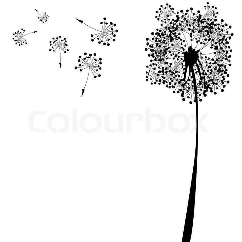 Dandelion against white background, abstract vector art
