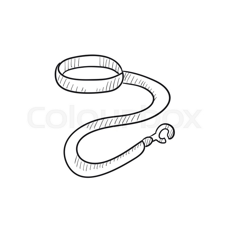 Dog leash and collar vector sketch icon isolated on