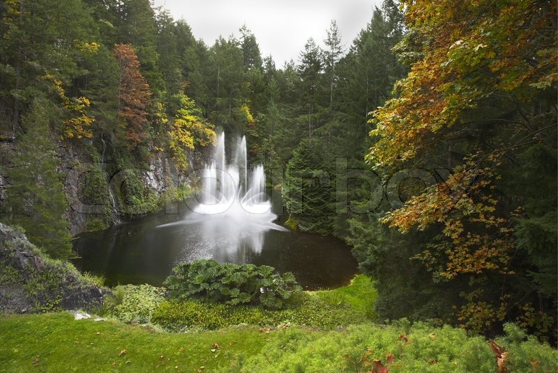 A Magnificent Fountain Jet In The Lake Surrounded By A Dense Forest Stock Photo Colourbox