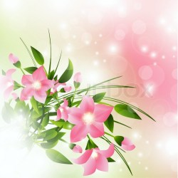 Pink flowers over pink background with Stock vector Colourbox