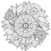 Contoured mandala shape flowers for adult coloring book in ...