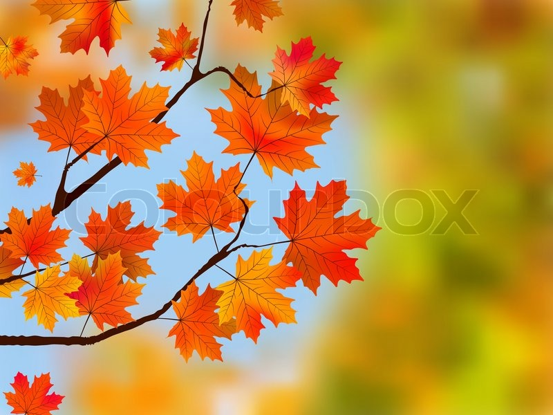 Colorful Fall Scene Wallpaper Red Maple Tree Leaves Against Blue Sky Eps 8 Vector File