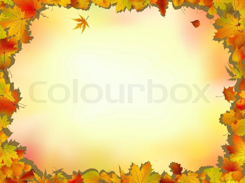 Fall Leaves Wallpaper Border Maple And Oak Leaves Frame On Soft Background For