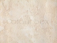 Beige wall texture close