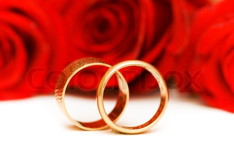 Hochzeit Konzept mit Rosen und goldene Ringe  Stockfoto
