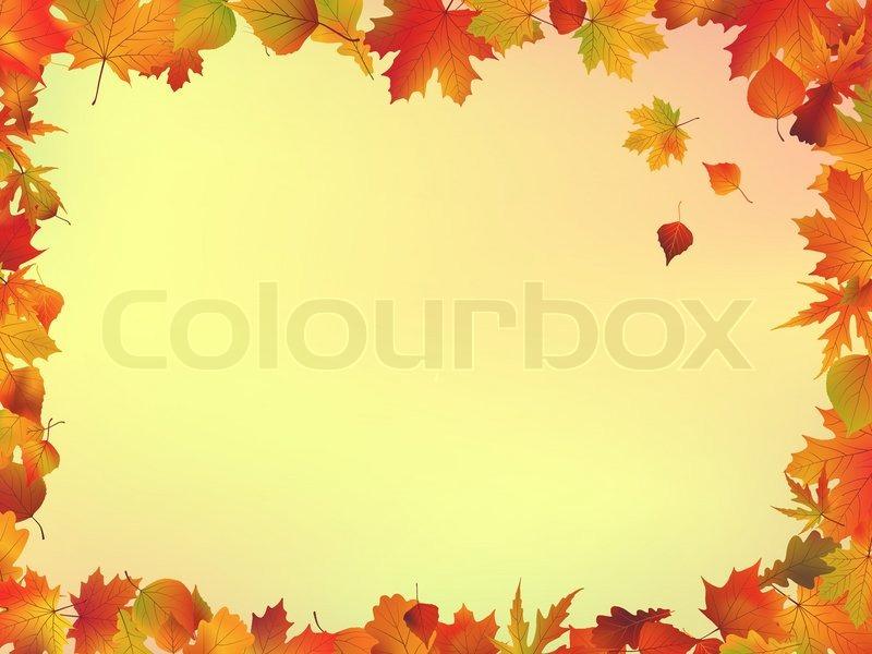 Water Falling Leaves Live Wallpaper Download Herbst Bl 228 Tter Rahmen Mit Copyspace Hintergrund