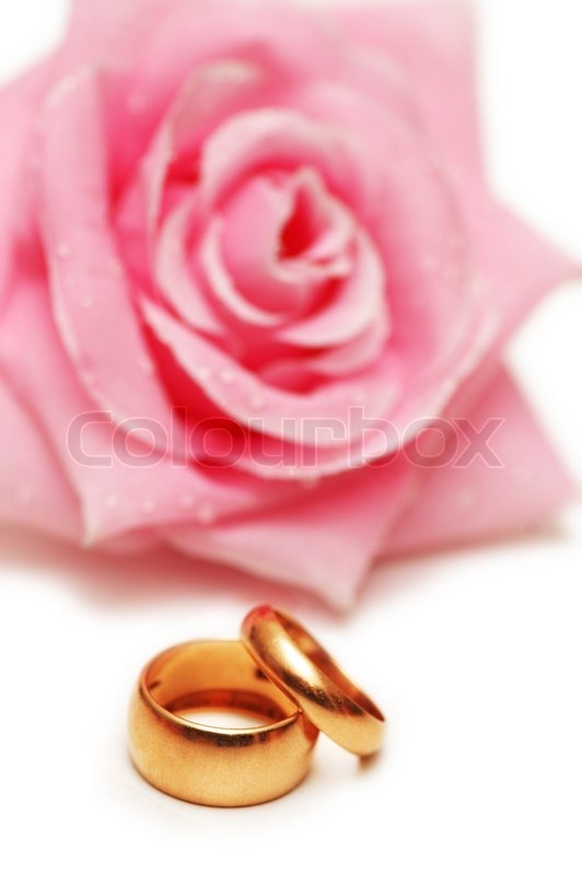 Two Wedding Rings And Pink Rose At The Background Stock