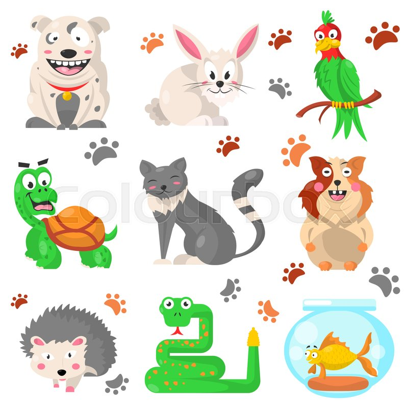cartoon pets colorful collection