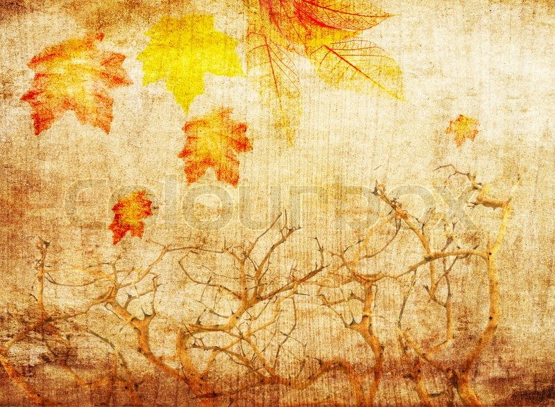 Hd Wallpaper Texture Fall Harvest Grunge Abstract Fall Background With Stock Image