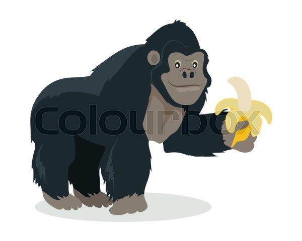 Gorilla cartoon character Funny big ape with banana in