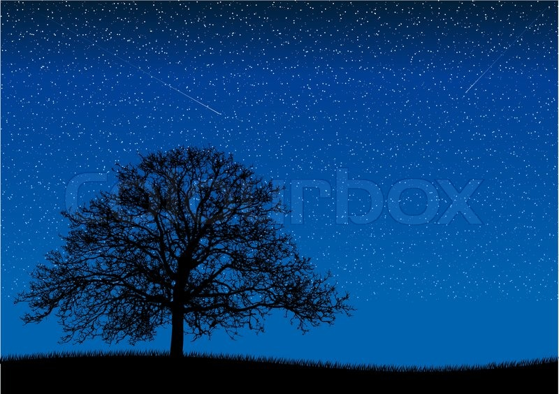 Free Country Girl Wallpaper Free Downloads Black Silhouette Of Old Tree At Night Scene Stock Vector
