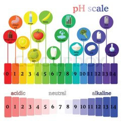 Diagram Of Modern Periodic Table Pigtail Wiring Ph Scale With Corresponding ... | Stock Vector Colourbox
