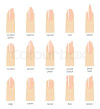 Different fashion nail shapes. Set kinds of natural color ...