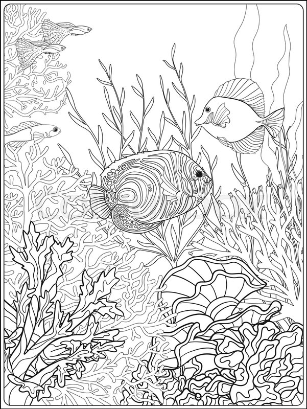 Coral Reef Coloring Page : coral, coloring, Adult, Coloring, Book., Stock, Vector, Colourbox