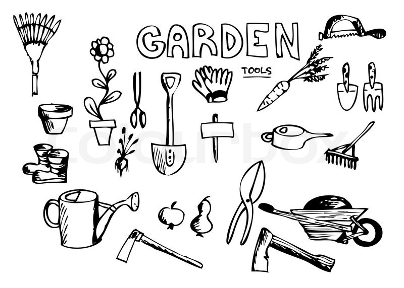 Drawn Pot Plant