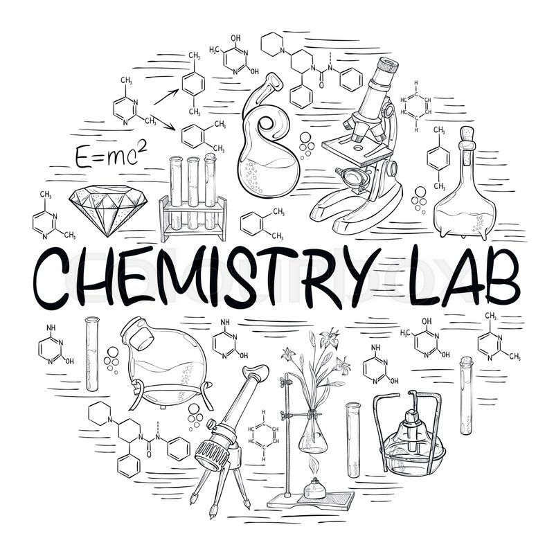 online biology lab manual