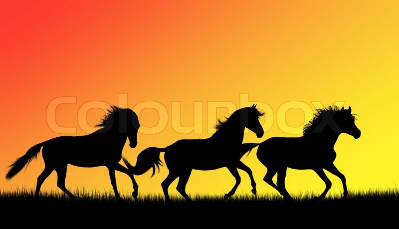 Free Fall Puppy Wallpaper Silhouettes Of Three Running Horses On Sunset Stock