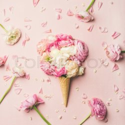 Flat lay of waffle sweet cone with pink Stock image Colourbox