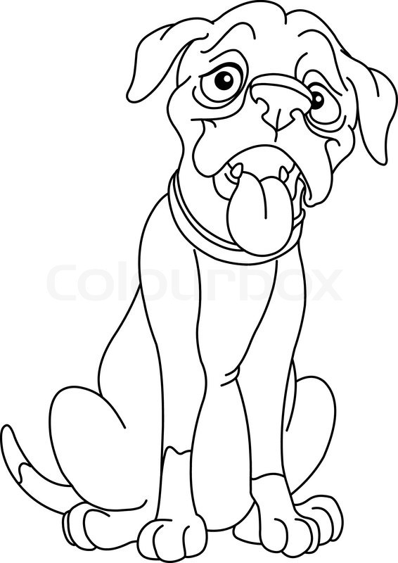 Outlined Boxer Dog Stock Vector Colourbox