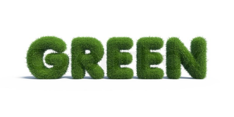 green grass in the