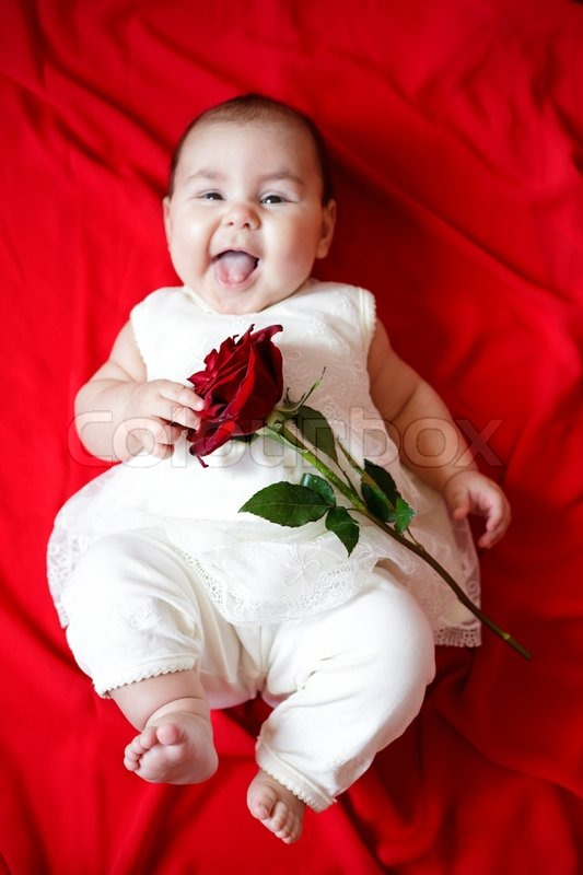 Cute Baby With Rose : Stock, Image, Colourbox