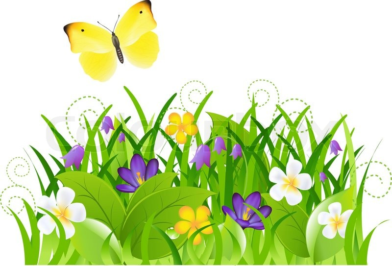 Flowers With Grass And Butterfly  Stock vector  Colourbox