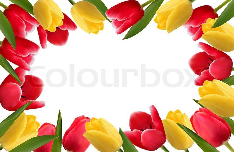 Farbe Frhling Blumen Rahmen   Vektorgrafik  Colourbox
