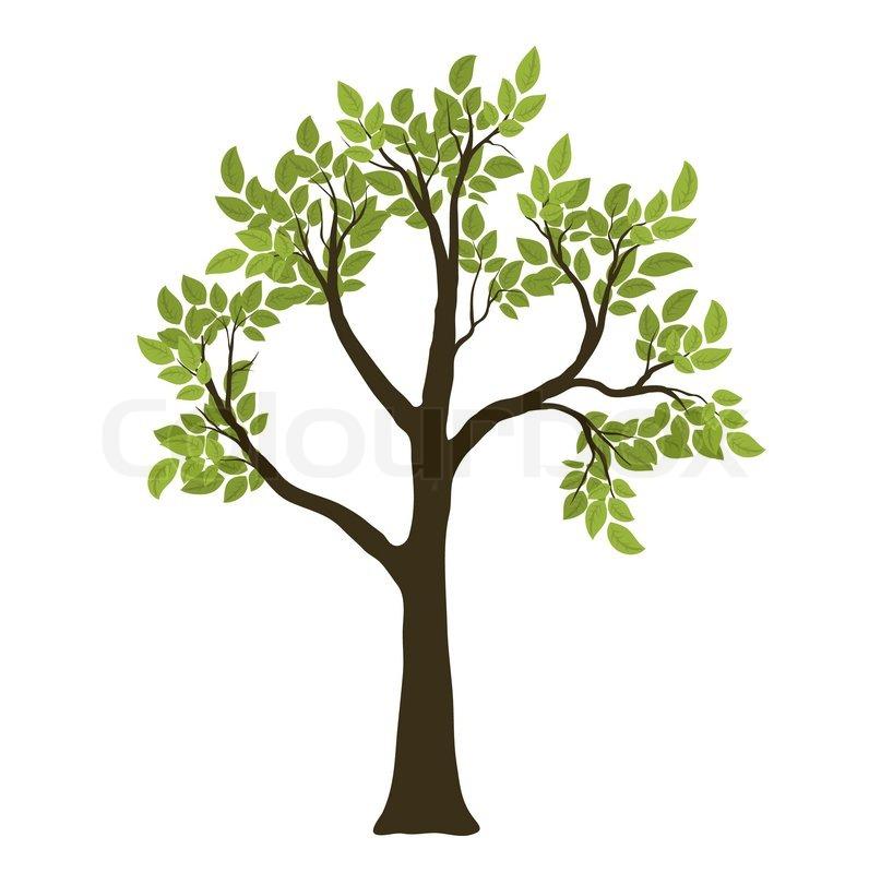Garden Decoration Trees
