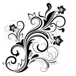 floral vector flower element drawings illustration isolated clip designs flowers line graphic drawing 123rf preview google colourbox clipartmag tattoo источник
