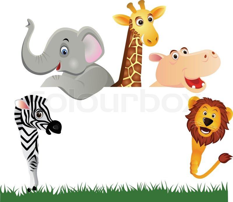 animal cartoon and blank