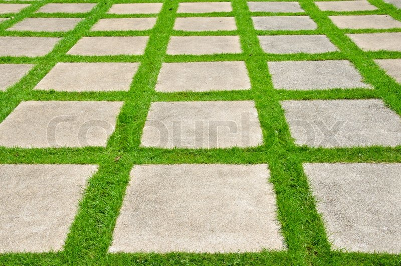 Grass between stones block paving  Stock Photo  Colourbox