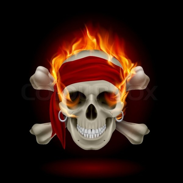 20 Flames With Skull And Bones Pictures And Ideas On Carver Museum