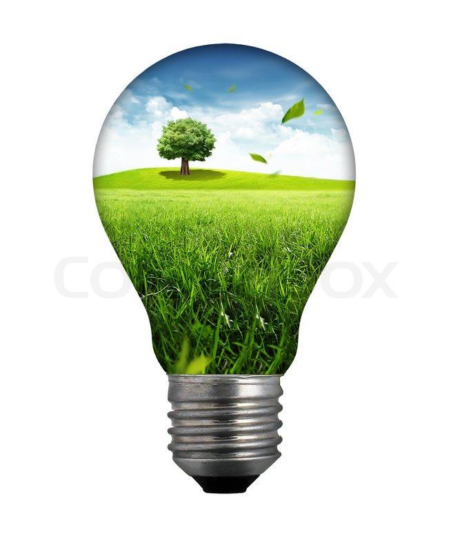 Grow Light Bulb Best