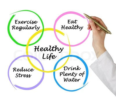 Diagram of healthy life | Stock Photo | Colourbox