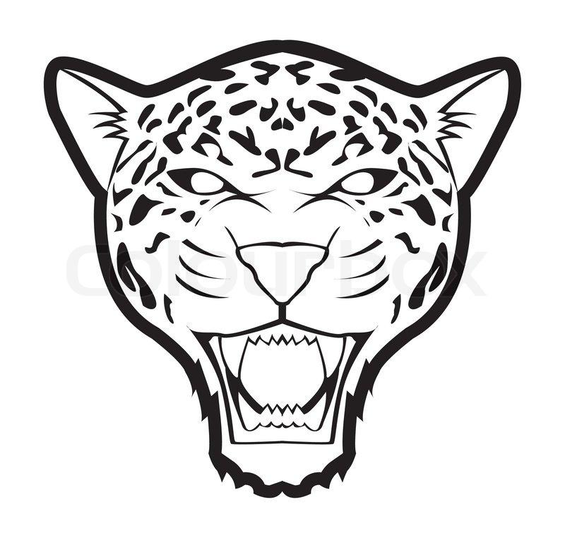 Drawn Animal Zoo Animal