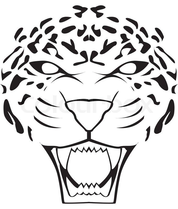 Leopard Face Stock Vector Colourbox