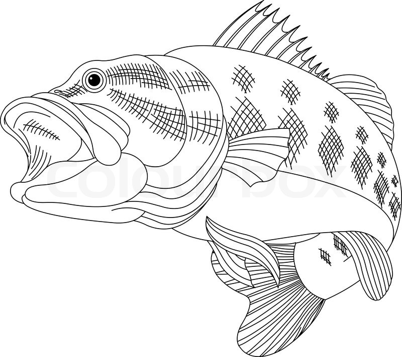 Food And Drink Coloring Pages