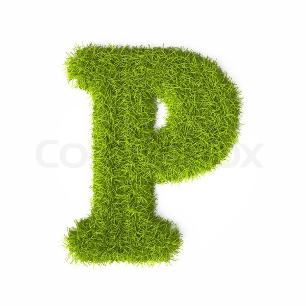 Grass style Latin Alphabet Letter P Isolated on white ...