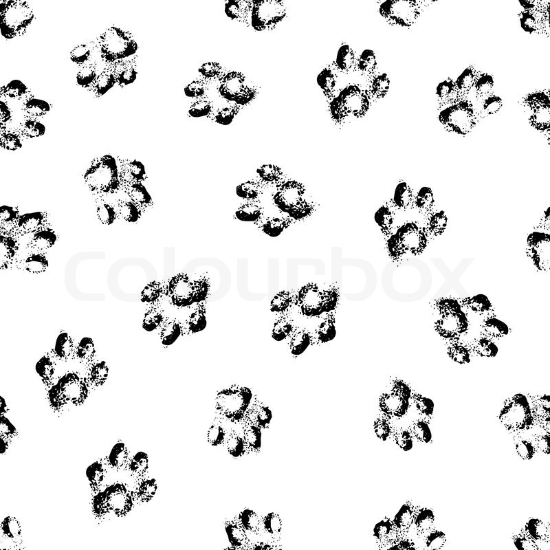 Animal cat paw track feet print icons with shadow. Foot
