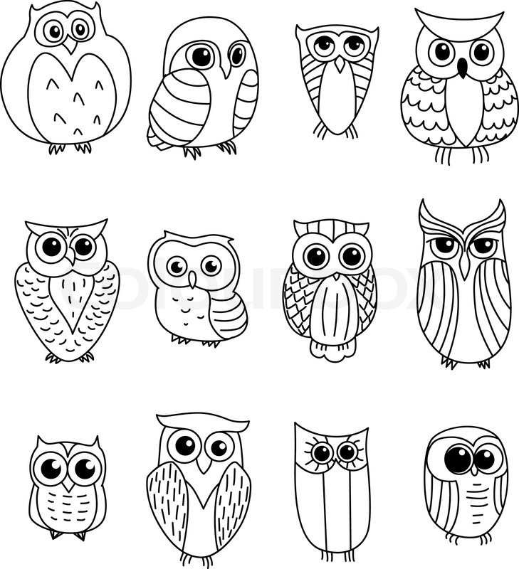 Cartoon owls and owlets birds isolated on white background