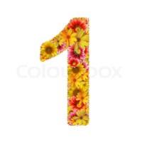 Blumen Nummer eins | Stockfoto | Colourbox