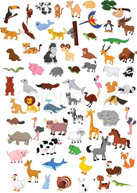Kinderbilder Tiere